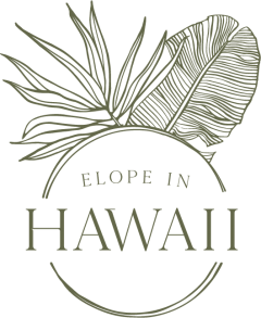 Elope in Hawaii - Elopement Packages in the Hawaiian Islands